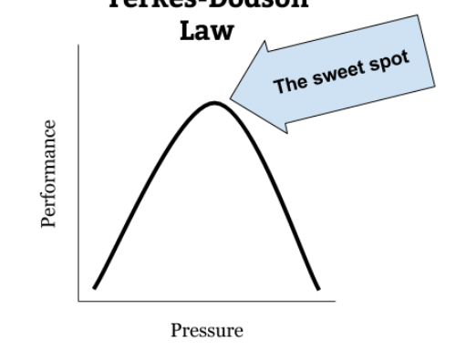 The Yerkes-Dodson Law and Its Application to Life