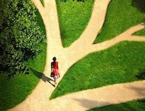 The Enneagram and the Variety of Paths for Personal Growth